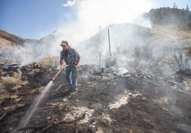 Adam Montes, an employee of Auvil Fruit, uses a hose to fight a brush fire near one of his orchards off Highway 97 in Orondo, Washington on Thursday, Aug. 4.